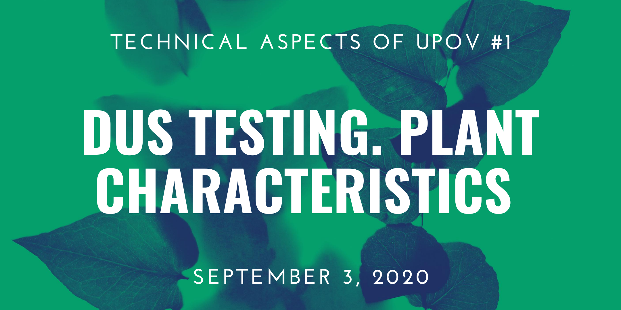 03/09/2020 – Webinar 1: DUS Testing under UPOV. Plant Characteristics in DUS Examinations