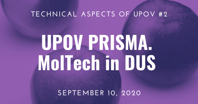 10/09/2020 – Webinar 2: PVP Applications via UPOV PRISMA. Use of MolTech in DUS Process