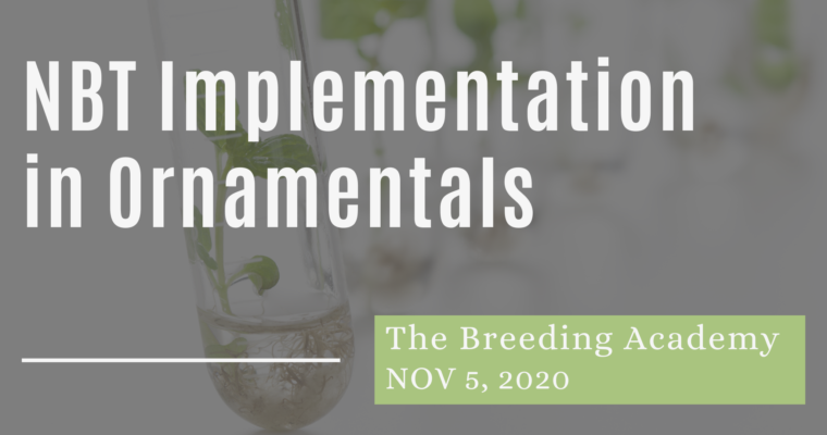 05/11/2020 – Ornamental Breeding: How to Implement New Breeding Techniques within the IP and Biotech Regulatory Framework