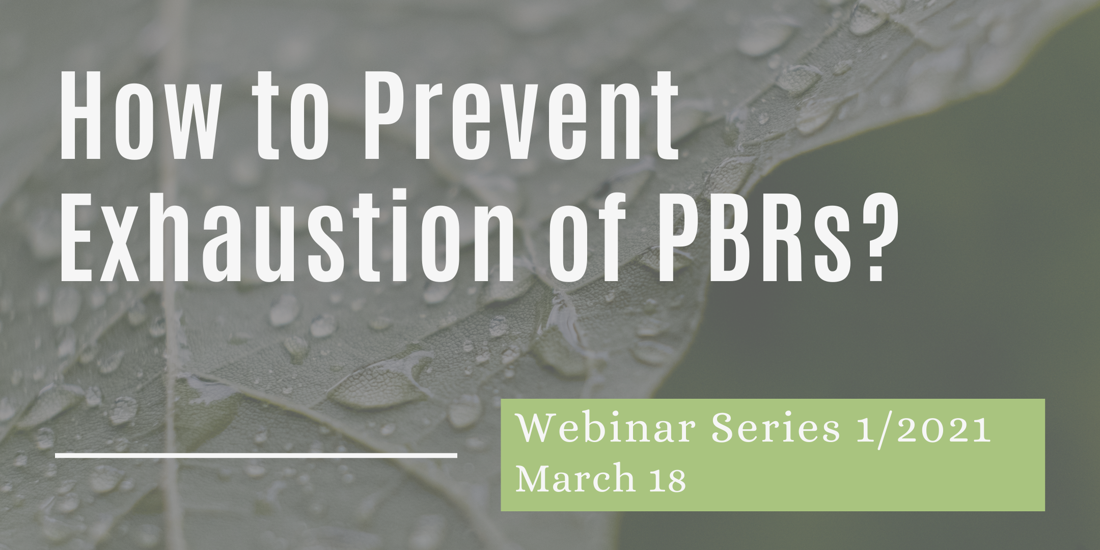 18/03/2021 – How to Prevent Exhaustion of PVRs on Plants and Harvested Material?