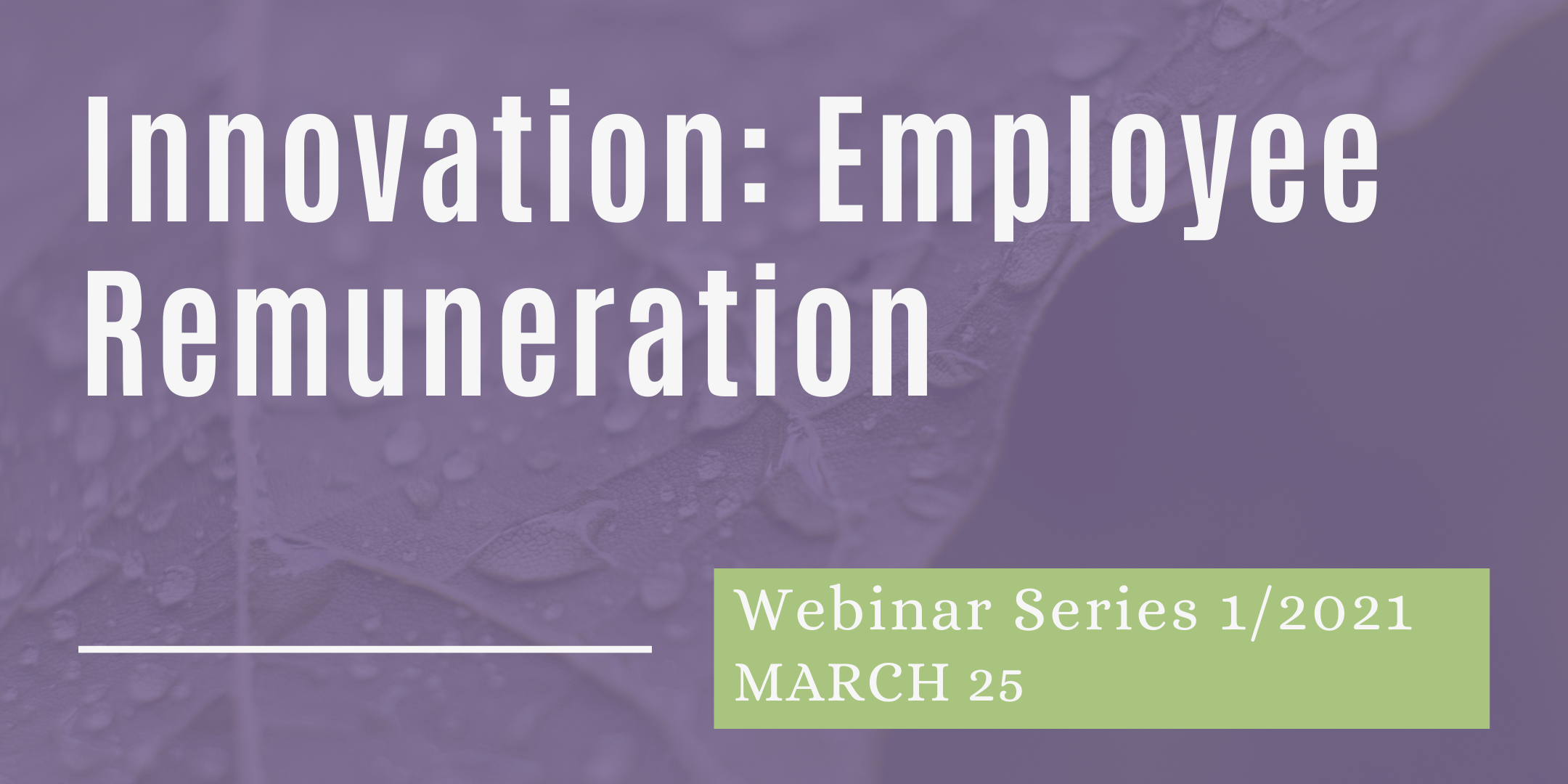 Webinar: Employee Remuneration for Innovation