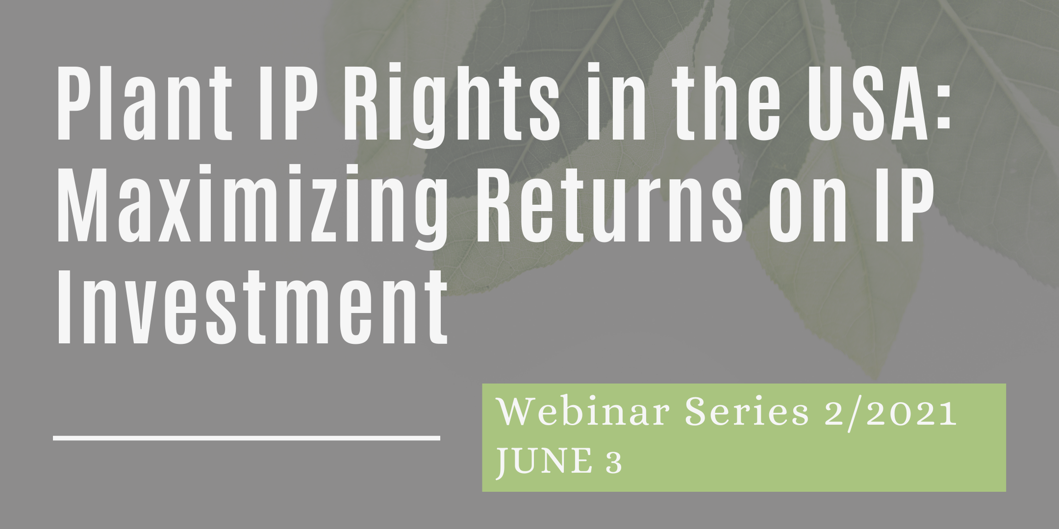 03/06/2021 – Plant IP Rights in the USA: Maximizing Returns on IP Investment
