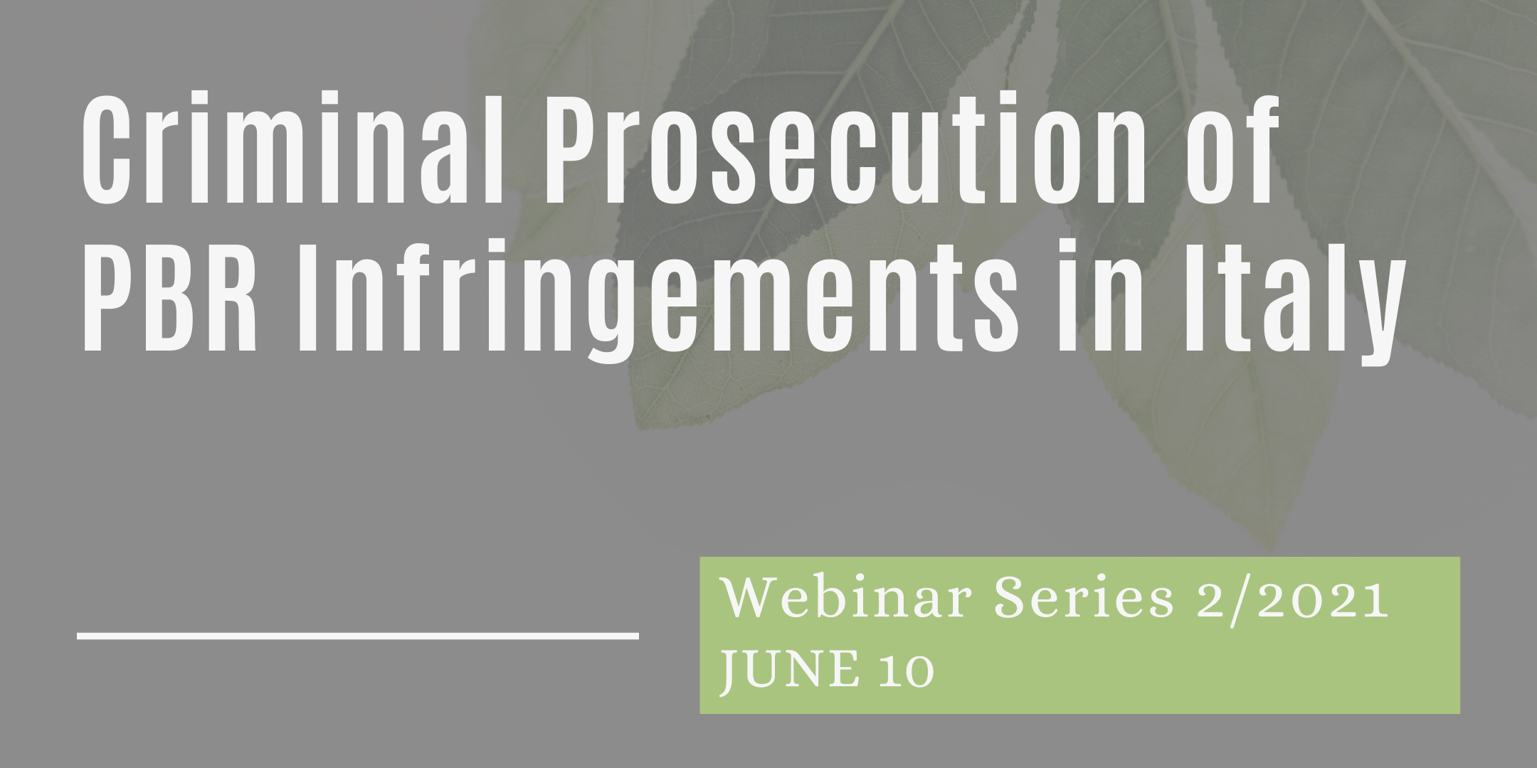 10/06/2021 – Criminal Prosecution of PBR Infringement Cases in Italy: Procedural Aspects and Case Law