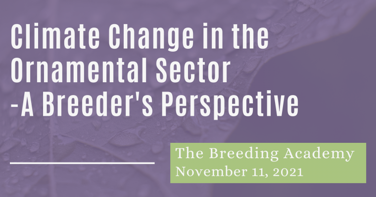 11/11/21 – Climate Change in the Ornamental Sector – A Breeder's Perspective