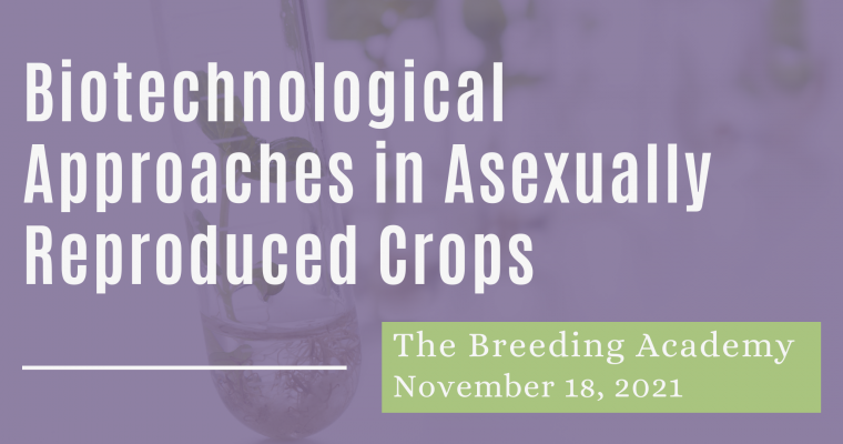 18/11/21 – Biotechnological Approaches in Asexually Reproduced Crops